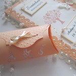 Svatební kniha  meruňka champagne s krabičkou