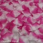 kvítka-růžové 1